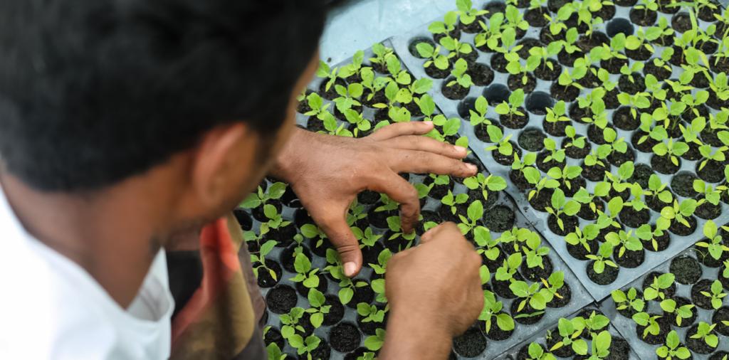 Shahidul Farmers' Hub